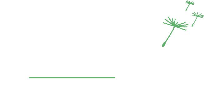 Asteraé